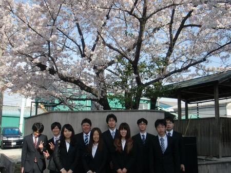 ブログ用桜の木集合写真.jpg