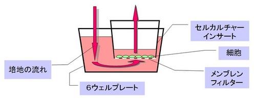 灌流培養システム概念図.jpgのサムネール画像