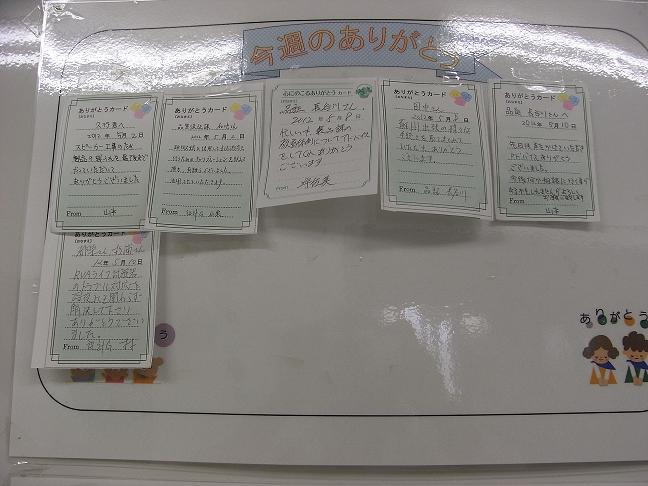 R0031309-2.JPG