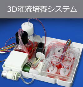 3D灌流培養システム