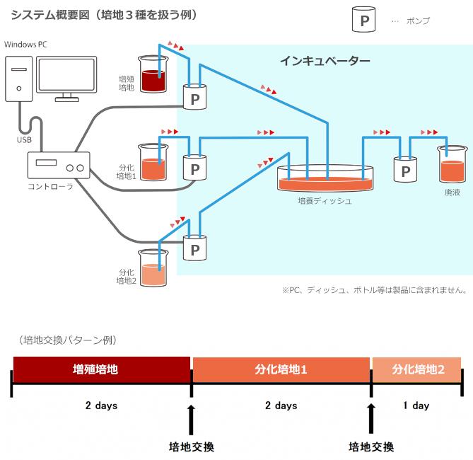 分化誘導システムイメージ-1