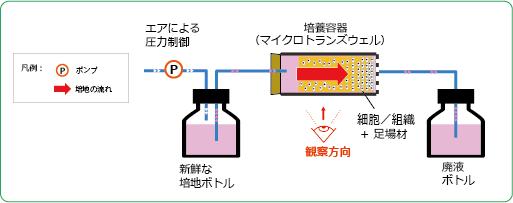 マイクロ3D灌流培養システム 高砂 細胞培養 自動化